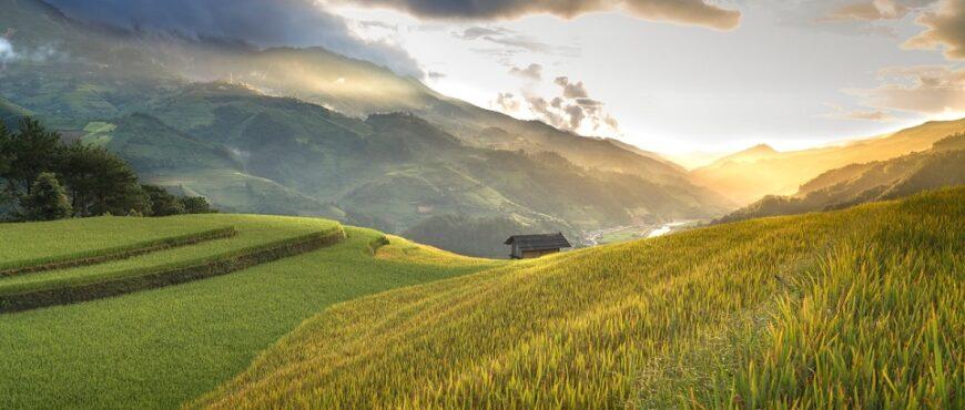 España apuesta por el Big data para favorecer el cultivo