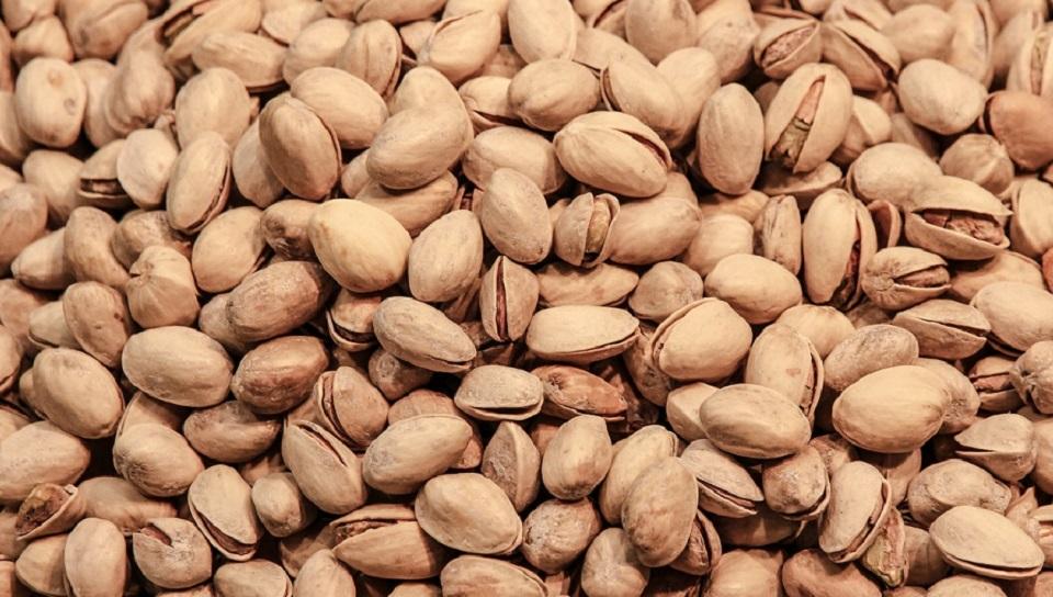 Cultivo de pistachos va en aumento