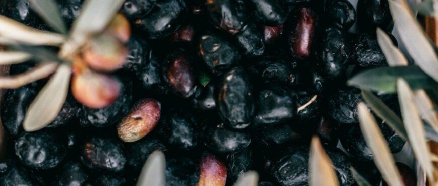 Se reducen exportaciones de aceituna negra a EEUU