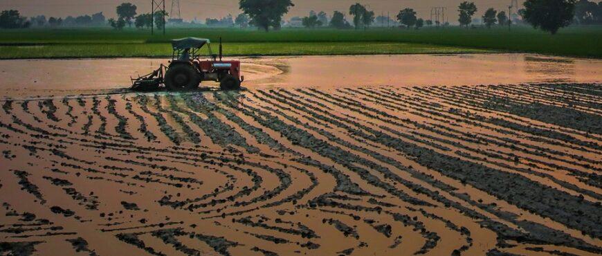 Almería muestra los nuevos métodos de fertirrigación
