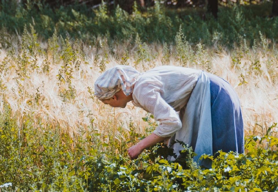 Ayudas para mujeres agricultoras