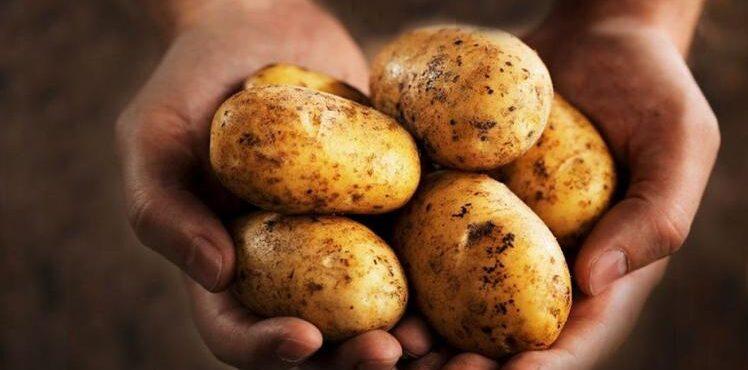 Patatas del Perú